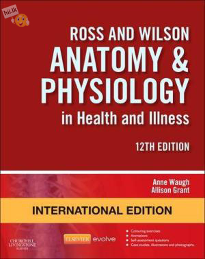 ANATOMY&PHYSIOLOGY IN HEALTH AND ILLINESS